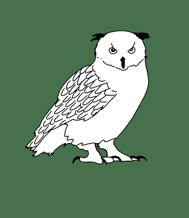 Vogelen Pyreneeën   Pyrénées Passions - Gîtes de Charmes