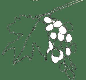 Domaine   Pyrénées Passions